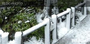 人形町イタリアンバールリトローボの雪かき