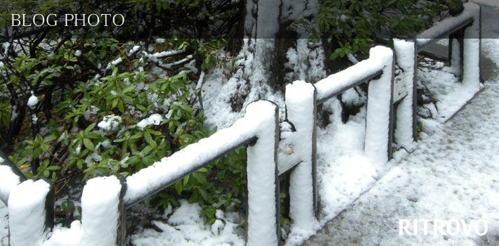 人形町イタリアンリトローボ周辺の大雪の東京