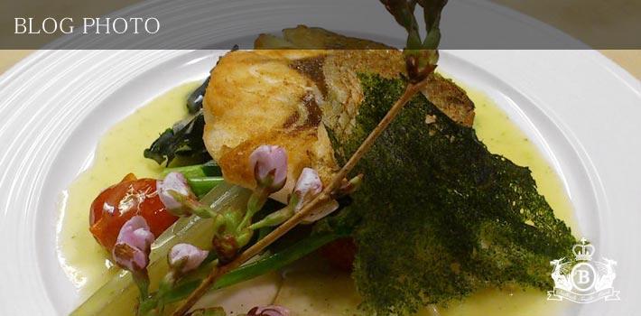 銀座京橋フレンチイタリアン居酒屋東京バルバリの真鯛のソテー バジルを効かせたペルノーソース